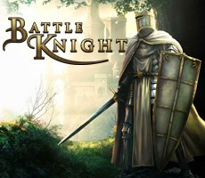 Battle Knight Epin