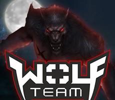 Wolfteam Nakit Joy Para Epin