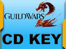 Guild Wars 2 Heroic Edition EU Cd Key